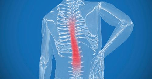 歪んだ背骨と骨盤のズレを調整することで症状を和らげる。